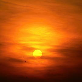 Pavel Jankasek - Sunset