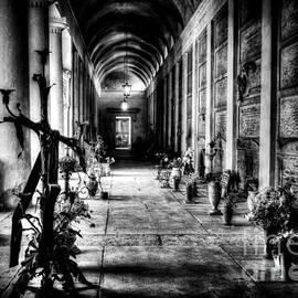 Traven Milovich - Cemetery of Verona