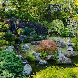 Roberto Berti - Tea Garden San Francisco