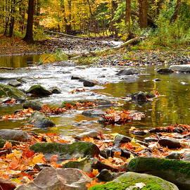 Frozen in Time Fine Art Photography - Autumn Stream
