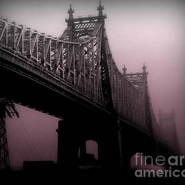 Miriam Danar - 59th Street Bridge in Rose - Bridges of New York City