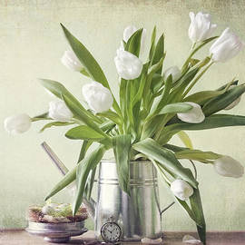 Steffen Gierok - Waiting For Spring
