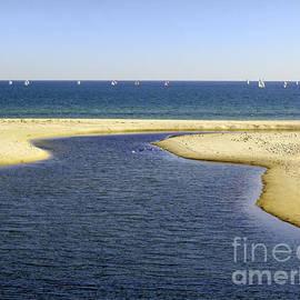 John Wallace - Australian beaches