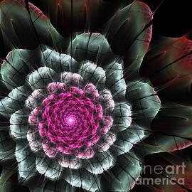 Martin Capek - Fractal flower