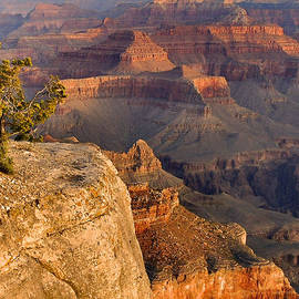 Stephen  Vecchiotti - Grand Canyon Afternoon