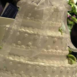 Robin Lee Mccarthy Photography - #775 D138 Cake All White