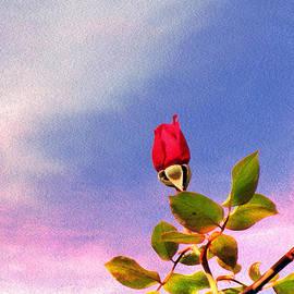 Lali Kacharava - Spring