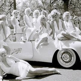 Shaun Higson - A Bevy Of Marilyns