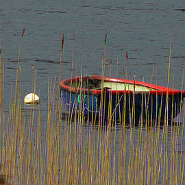 Dave Byrne - A Boat on a Lake in Killarney Ireland