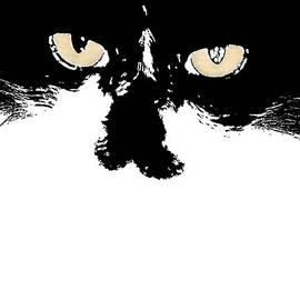 Nola Lee Kelsey - A Cat Named Pop