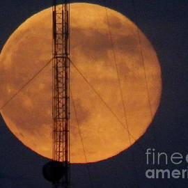 Michael Hoard - A Climb Up To View The Super Moon Rise Above New Orleans Louisiana