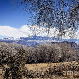 Janice Rae Pariza - A Colorado Landscape
