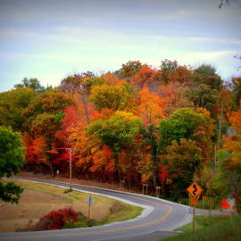 Kay Novy - A Country Road In Autumn 1