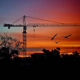 Claude LeTien - A Crane And Three Birds