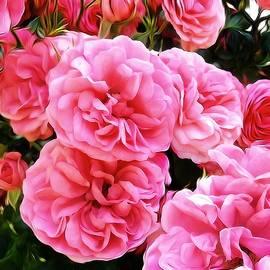 Gabriella Weninger - David - A Dream Of Roses