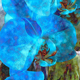 Lynda Lehmann - A Fine Blue Orchid Dream