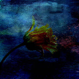 Randi Grace Nilsberg - A Floral Dream