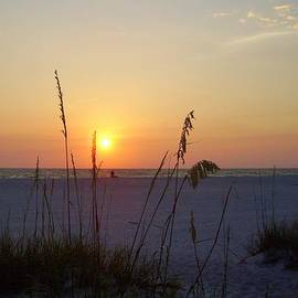 Cynthia Guinn - A Florida Sunset