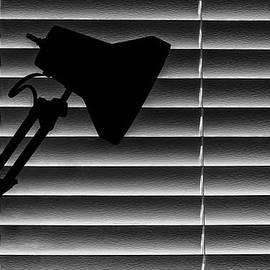 A Light in the Dark Still Life