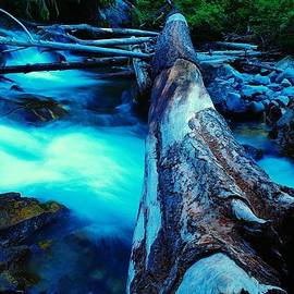 A log over rapids