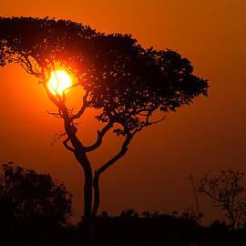 Robert Ford - A Memorable Savanna Sunset Kundelungu National Park DR Congo