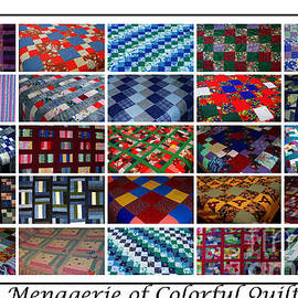 Barbara Griffin - A Menagerie of Colorful Quilts