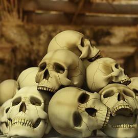 Liam Liberty - A Pile of Skulls