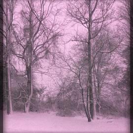 Majula Warmoth - A Pink Glance of Winter
