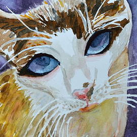 Beverley Harper Tinsley - A Pleading Look