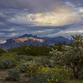Saija  Lehtonen - A Rainy Day at the Superstitions