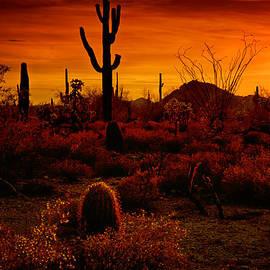 Saija  Lehtonen - A Red Desert