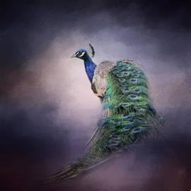 Jai Johnson - A Royal Jewel - Peacock - Wildlife