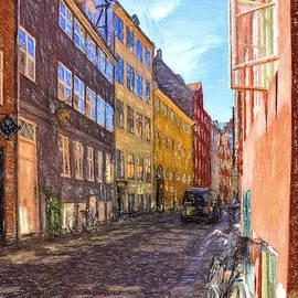 Angela A Stanton - A Scandinavian Street