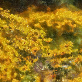 Thomas Woolworth - A Sea Of Sun Flowers Photo Art 02