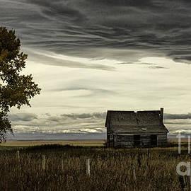 Brad Allen Fine Art Photography - A Settler