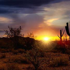 Saija  Lehtonen - A Sonoran Style Sunrise