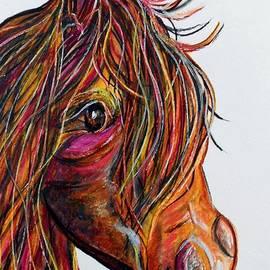 Eloise Schneider - A Stick Horse Named Amber