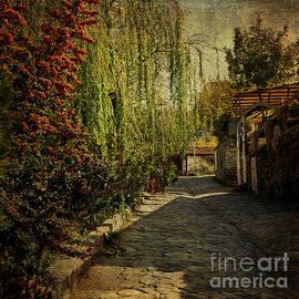Liz  Alderdice - A Street in Turkey