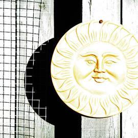 Steve Taylor - A Sunny Disposition