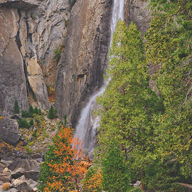 Lynn Bauer - A Touch of Autumn at the Falls