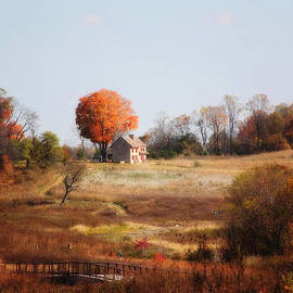 Trina  Ansel - A Walk In the Meadow