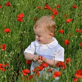 Kristina Deane - A Walk In the Wildflowers