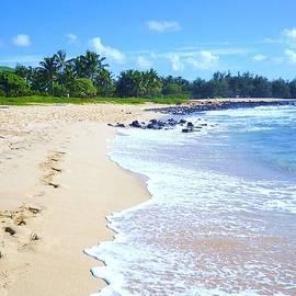 Stephanie Callsen - A walk on the beach