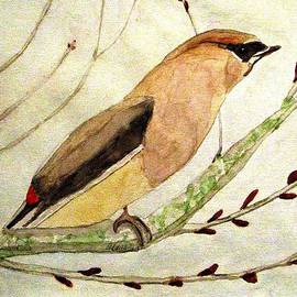 Angela Davies - A Waxwing In The Orchard