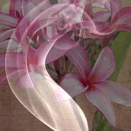 Irma BACKELANT GALLERIES - A Wiff Of Beauty