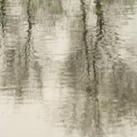 Ramona Whiteaker - A Wiggly Reflection