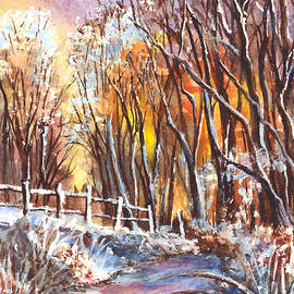 Carol Wisniewski - A Winter Sunset