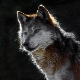 Ernie Echols - A Wolf Digital Art