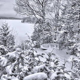 Chantal PhotoPix - Abandoned and Forgotten - An Old Fishing Boat Surrounded by Snowy Evergreens on a Frozen Lakefront