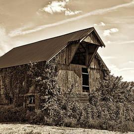 Marcia Colelli - Abandoned Barn